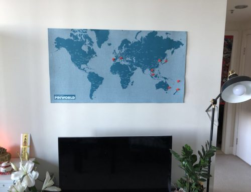 买家秀:Palomar  旅行毛毡图钉地图/PinWorld Maps