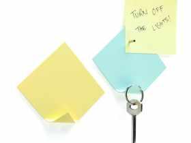 Monkey Business 粘性钥匙挂钩与磁铁便签条/key note