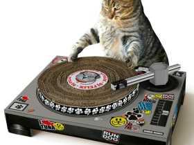 Suck Uk 宠物玩具小猫打碟机/小猫DJ台 创意小猫玩具 Cat Scratch Turntable