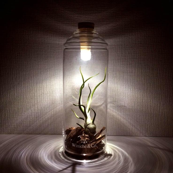 bottle-light-7